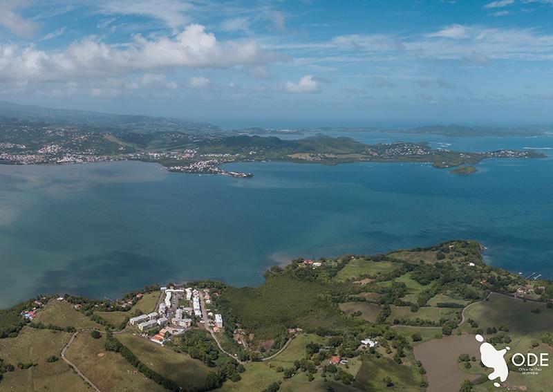 En Martinique, quelle superficie recouvrent les zones humides ?