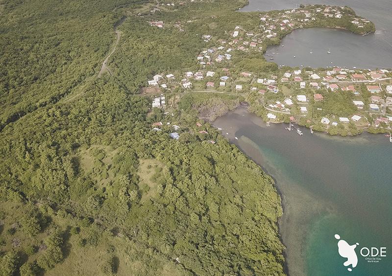 Vrai ou Faux : les zones humides jouent un rôle indispensable dans la prévention des risques naturels (inondation, sécheresse, tsunami).